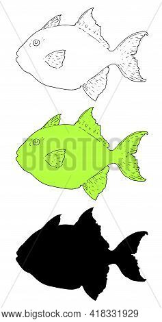 Greg Triggerfish. Fish Set Sketch In Cartoon Style On White Background. Line Art Drawing Style. Vect