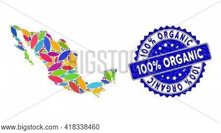 Colorful Mexico Mosaic Map Done Of Coca Leaf Pictograms, And 100 Percent Organic Textured Stamp. Vec