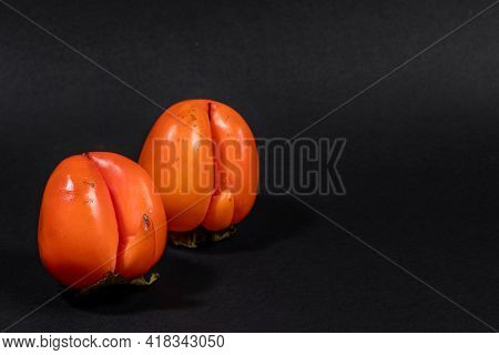 Two Non-standard Ugly Ripe Orange Persimmons On Black Background With Copy Space For Text.
