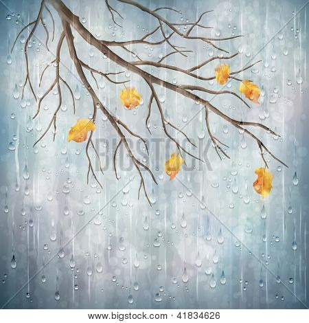 Vector Autumn Rain Weather Artistic Natural Design