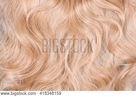 Blonde Hair Texture. Wavy Long Curly Blond Hair Close Up As Background. Hair Extensions, Materials A