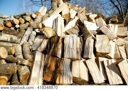 Preparation Of Firewood For The Winter. Stacks Of Firewood In The Forest. Pile Of Firewood. Firewood