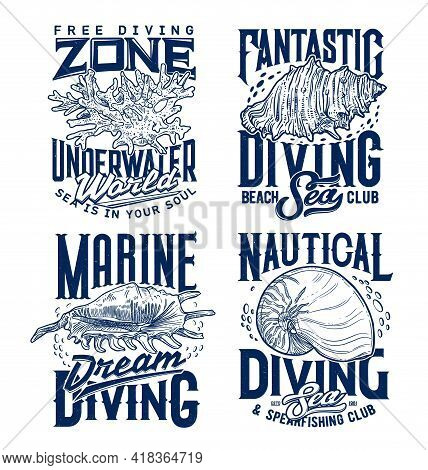 Mollusks And Sea Snails Seashells, Corals Colony T-shirt Print Template. Marine Diving And Spearfish