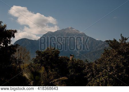 Magnificent View The Coniferous Trees And Mountains And Beautiful Blue Sky