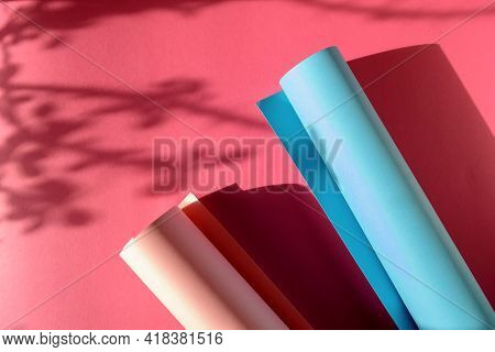 Abstract Background With Geometric Shape Blue-pink Colored Paper. Plant Shadows On Paper