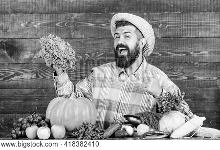 Farm Market Harvest Festival. Man Bearded Farmer With Vegetables Rustic Style Background. Sell Veget