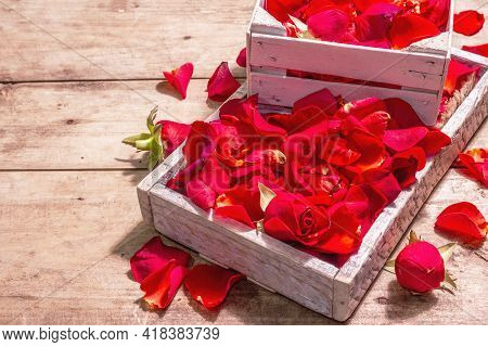 Fresh Red Roses Petals In Wooden Crates