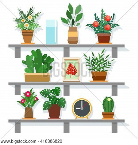 Indoor Office Plants. Blooming Green Plant Set Vector Image Where, Home Planted Vegetable Life, Colo