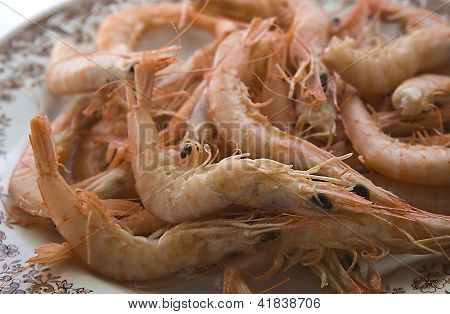 Huelva White Prawns Plate Ready To Serve