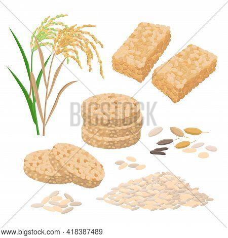 Puffed Rice And Popped Rice Food, Cakes, Rice Heap And Plant. Set Of Vector Illustrations Isolated O