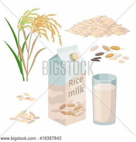Rice Milk Package And Glass Of Rice Plant Milk, Pile Of Rice Grains And Plant. Set Of Vector Illustr