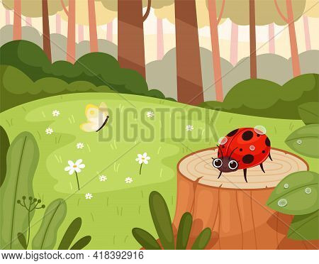 Ladybug In Wood. Green Natural Park With Funny Insects Warm Garden Outdoor Cartoon Background Nowada
