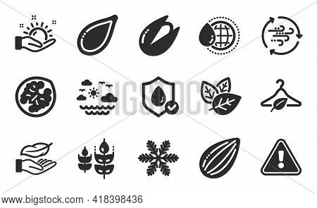Wind Energy, Pistachio Nut And Almond Nut Icons Simple Set. Snowflake, World Water And Slow Fashion
