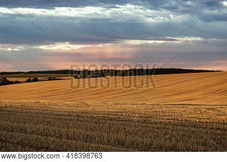 Freshly Harvested Fields Of Barley In Countryside Landscape In Late Summer Sunset Light