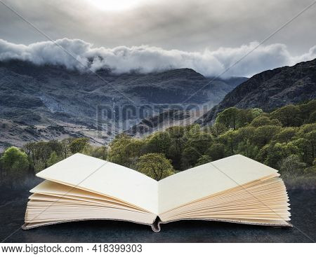 Forest Landscape Next To Coniston Water In Lake District In England In Pages Of Imaginary Reading Bo