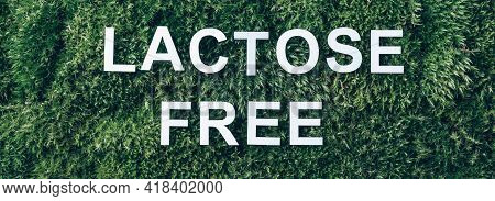 Inscription Lactose Free On Moss, Green Grass Background. Top View. Copy Space. Banner. Biophilia Co