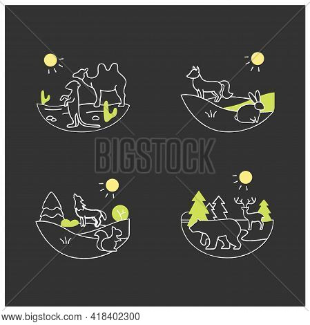 Biodiversity Chalk Icons Set. Consists Of Desert, Grassland, Temperate Forest, Taiga Forest Ecosyste