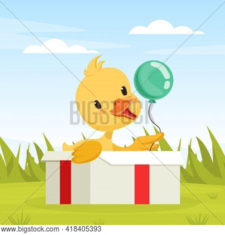 Cute Duckling Baby Sitting In Present Box On Beautiful Summer Landscape Vector Illustration