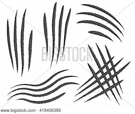 Set Of Scratches From The Claws Of An Animal Close Up On A White Background