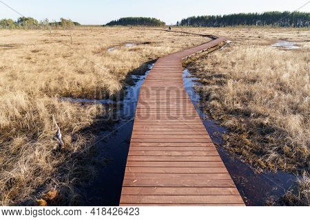 Aerial View Of Wooden Walkway On Swamp National Park, Ecological Trail Path, Route For Trekking In M