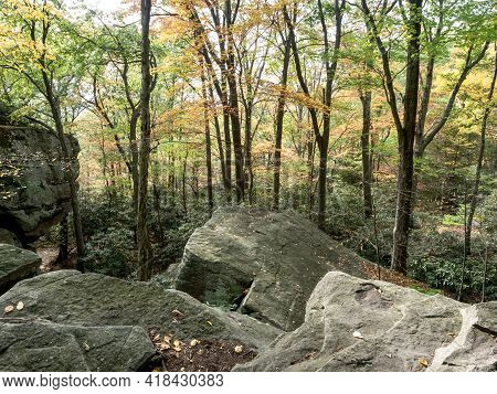 Coopers Rock State Forest In West Virginia In The Fall With The Foliage And Fallen Leaves All Around