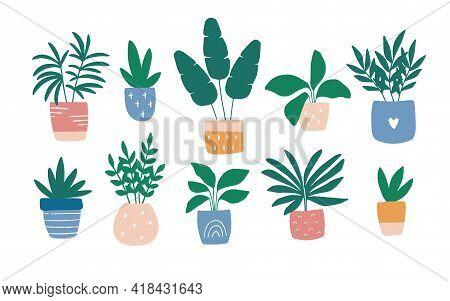 Hand-drawn House Plant In Colorful Pot. Trendy Cozy Home Garden Decor. Urban Jungle Vector Illustrat