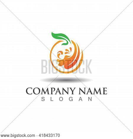 Fruit Juice Logo Fresh Drink Logo, Juice Clipart, Illustration Template Vector