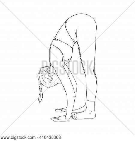 Stretching Yogi Woman. Hatha Yoga Forward Fold Pose. Engraved Vector Illustration In White Backgroun