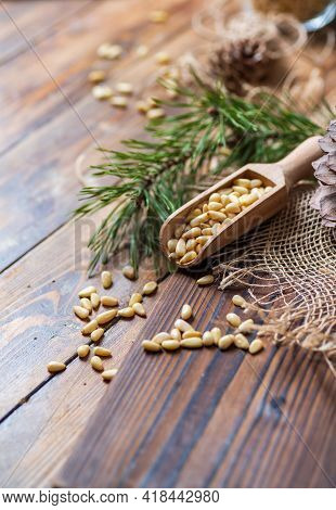 Pine Nuts In A Scoop With A Pine Branch, Lie On A Wooden Table. Distant Shot, Background For Recipes