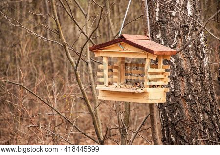 Wooden bird house in autumn forest. Old wooden feeder for birds on a tree in the city park, empty bird's feeder caring about wild birds in cold season.