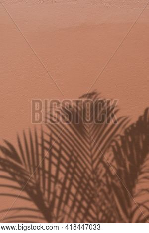 Background with shadow of a palm tree