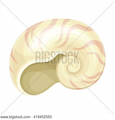 Seashell As Hard Marine Snail Shell Vector Illustration