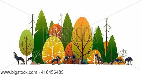 Wolf Pack In The Forest. Timber Wolves Hunt. Landscape, Green Trees Park, Alley And Foliage In Summe