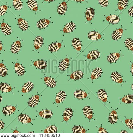 Seamless Vector, Striped Potato Beetles On Green Background. Many Crop Pests
