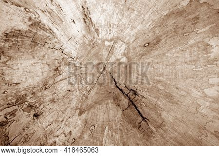 Wooden Board Texture With Blur Effect In Brown Tone. Abstract Background And Texture For Design.