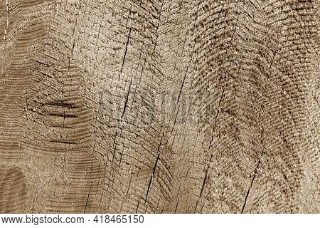 Part Of Wood Curving On Oak In Brown Tone. Natural Background And Texture.