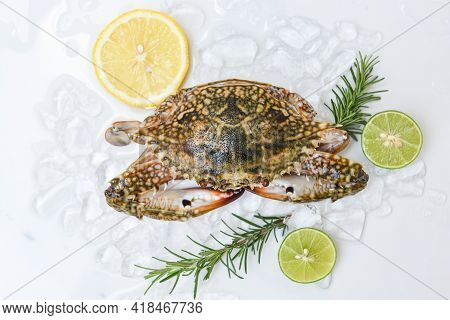 Seafood Crab On Ice For Cooking Food In The Restaurant, Fresh Raw Blue Swimming Crab Ocean Gourmet W