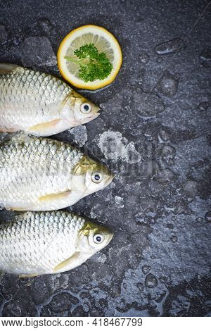 Silver Barb Fish On Ice,  Java Barb Carp Fish On Market Food With Herb And Spices Lemon On Dark Back