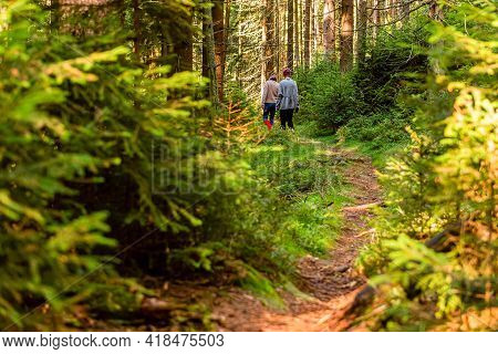 People Walking On A Hike Path In A Deep Forest In Table Mountain. Natural Parkland. Nature Backgroun