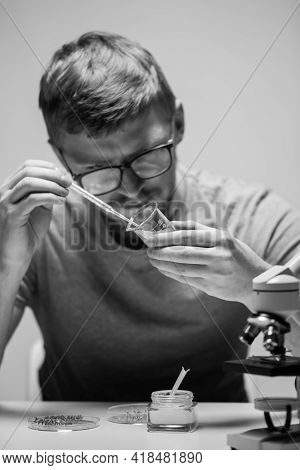 Young Bearded Biologist Geneticist In Glasses Drops Reagent On Plant Leaf