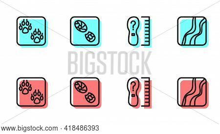 Set Line Square Measure Foot Size, Paw Print, Human Footprints Shoes And Snake Paw Icon. Vector