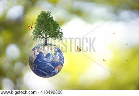 Planet Earth Globe Ball And Growing Tree, Flying Yellow Butterfly On Green Sunny Blur Background. Sa
