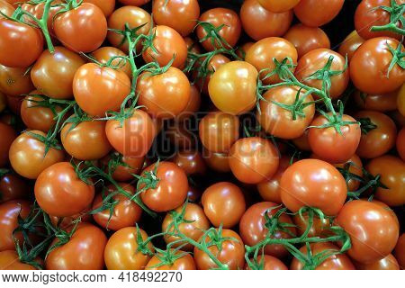 Still Life With Lot Of Small Ripe Red Tomatoes On Branches As Background Top View Close Up