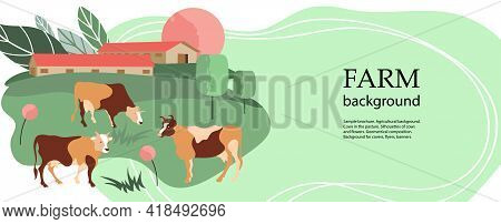 Horizontal Agricultural Background. Cows In The Pasture. Livestock Farm.