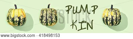 Pattern From Small Round Striped Pumpkin And Text Pumpkin On Light Green Background. Close Up Autumn