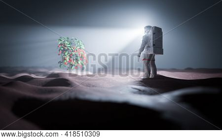 Astronaut discovers green plant on Mars, a red planet. Spacewalk. 3D render
