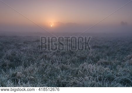Misty Sunrise - A Picturesque Morning Over The Meadows