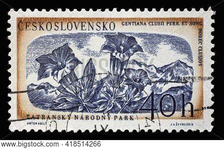 ZAGREB, CROATIA - SEPTEMBER 18, 2014: Stamp printed in Czechoslovakia shows gentiana clusii flower, Tatra national park, circa 1957