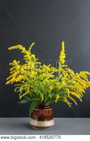 Bouquet Of Canadian Goldenrod In A Brown Ceramic Vase On A Gray Background, Twigs With Delicate Yell