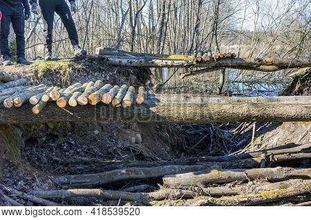 Building A Bridge For Pedestrians. Bridge Over The Ditch. Log Bridge.